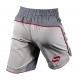 SPRAWL FUSION 2 FIGHT SHORTS - GREY / CHARCOAL