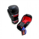 PROFESSIONAL FIGHTER BOXING GLOVES