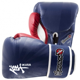 HAYABUSA IKUSA 16OZ GLOVES - BLUE / RED