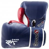 HAYABUSA IKUSA 16OZ GLOVES - BLUE / RED