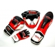 PROFESSIONAL FIGHTER SHIN PADS MODERN LINE RED