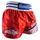 HAYABUSA LION WARRIOR MUAY THAI SHORTS - RED / BLUE